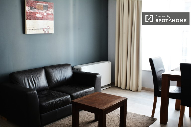 Modern Studio Apartment in the City Center of Brussels