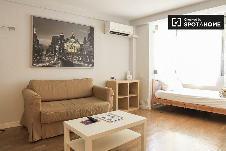 Schönes Studio-Apartment zur Miete in Madrid