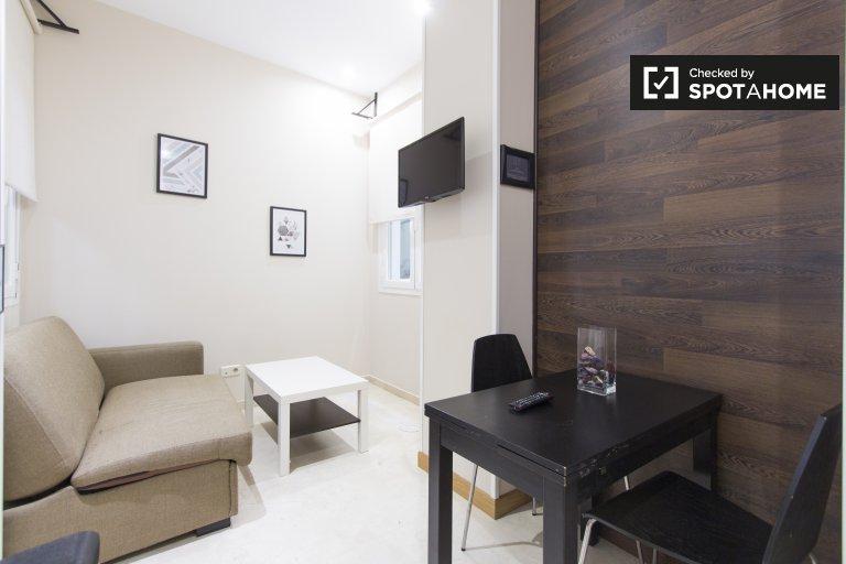 Wonderful studio apartment for rent in Centro, Madrid