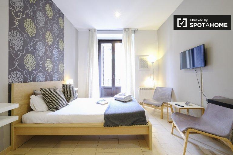 Modernes Studio-Apartment zur Miete in Madrid Centro