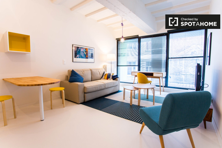 Studio apartment with balcony for rent in central Brussels