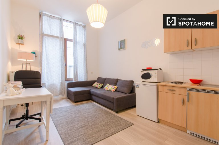 Cosy studio apartment for rent in Brussels city centre