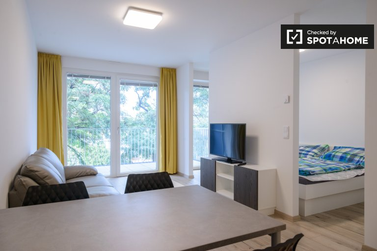 Studio 1-bedroom apartment for rent in Donaustadt