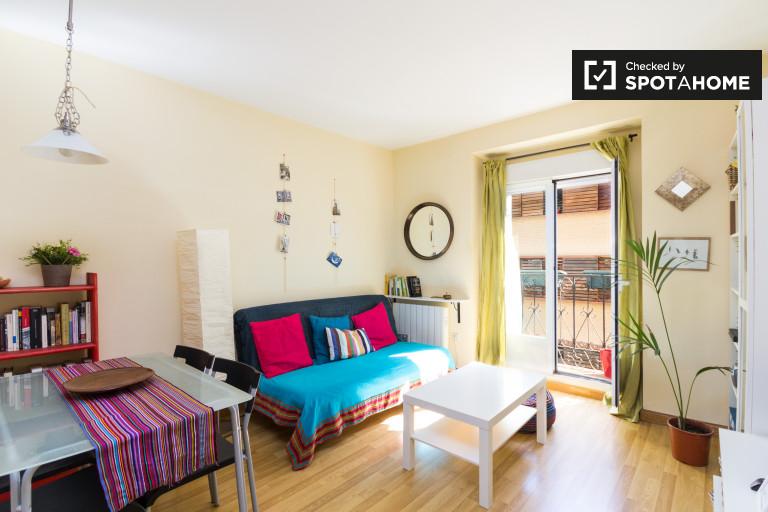 Bright 1-bedroom apartment for rent in Lavapiés, Madrid