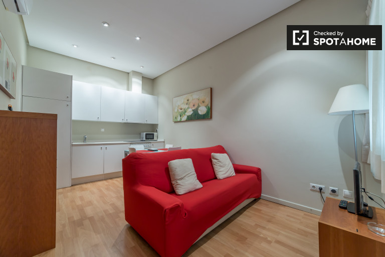 Contemporary 1-bedroom apartment for rent in Ciutat Vella