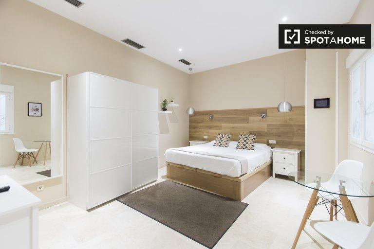 Przestronny apartament typu studio do wynajęcia w Centro w Madrycie