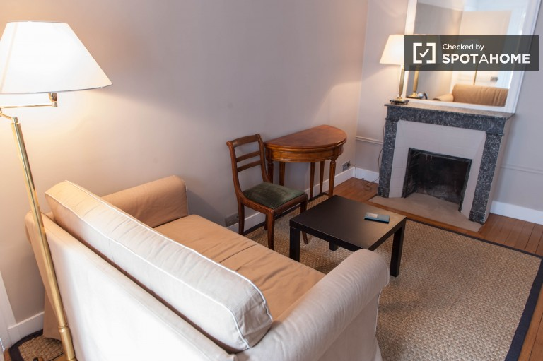 Brand New 1 Bed Flat for Rent in 6th Arrondissement, Paris