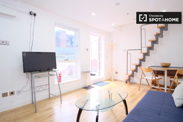 Bright 2-bedroom flat to rent in City of Westminster, London
