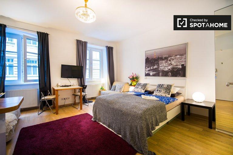 Gorgeous studio apartment for rent in Margareten