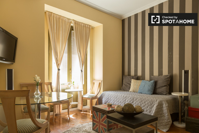 Studio apartment with AC for rent in Madrid City Center