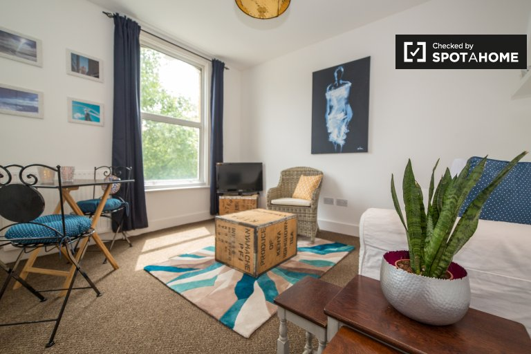 Modern 1-bedroom apartment to rent Upper Clapton, London