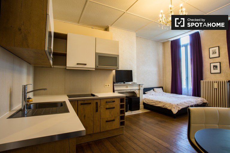 Semi-independent studio apartment to rent near EU area in Ixelles