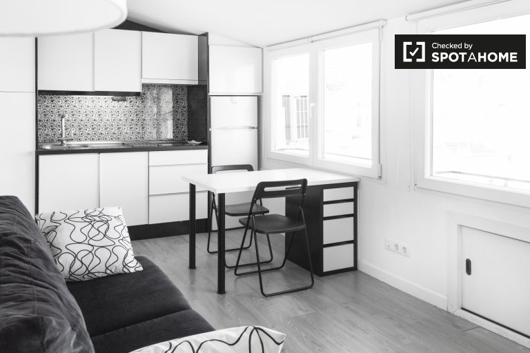 Modern studio apartment for rent in Centro