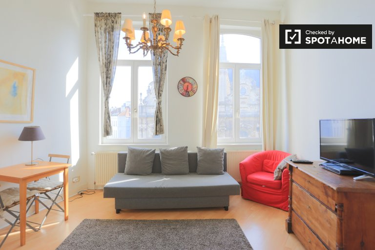 Unique studio apartment for rent in Brussels city center