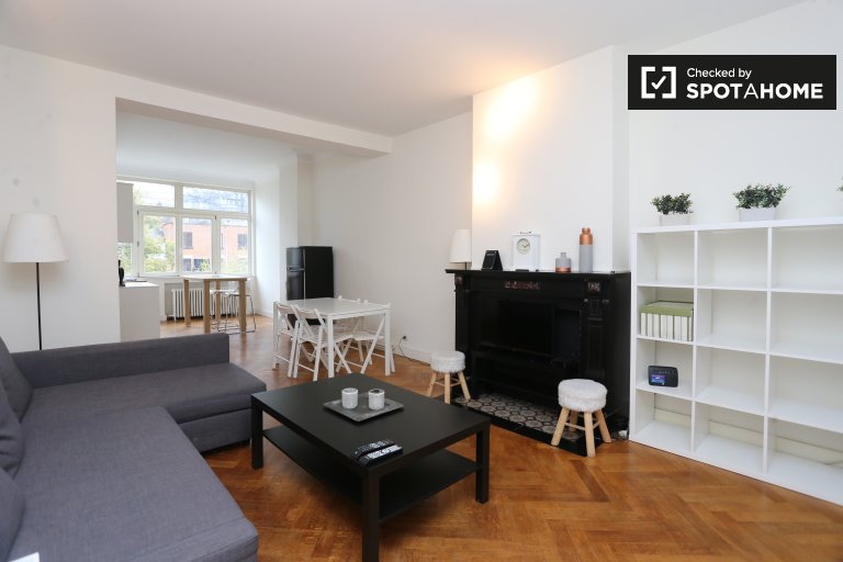 Bright 2-bedroom apartment for rent in Ixelles, Brussels