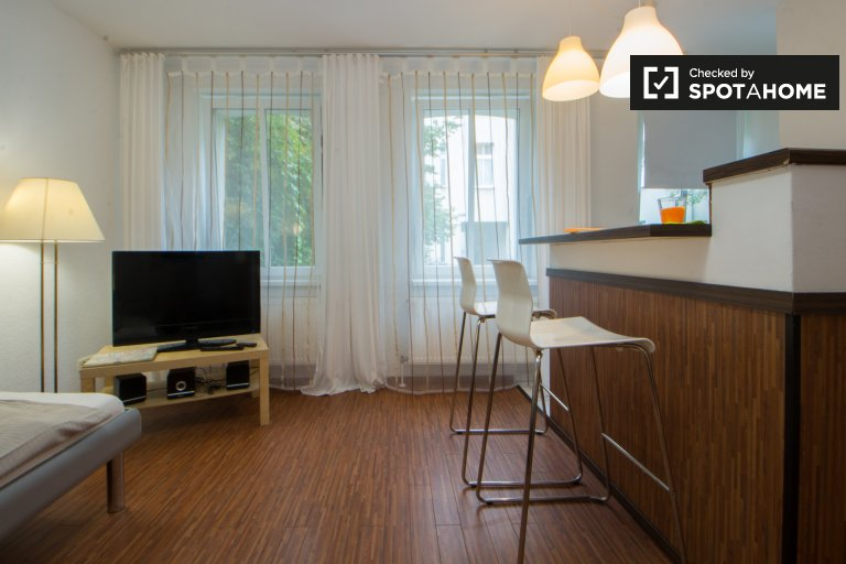 Quiet and bright studio apartment for rent in Pankow