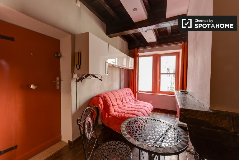 Welcoming studio apartment for rent in Vieux Lyon