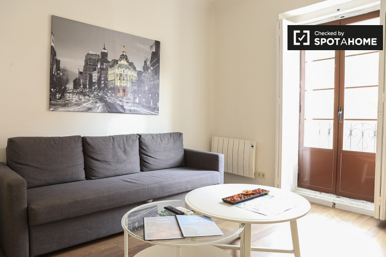 3-bedroom apartment with balconies for rent in Lavapies
