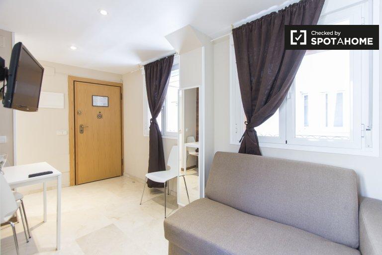Bright studio apartment for rent in centre of Madrid