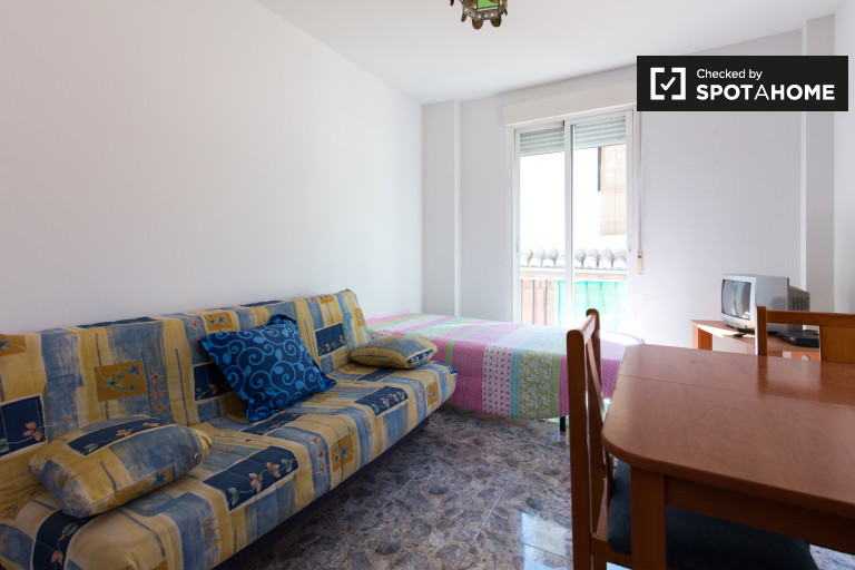 Studio apartment with balconies for rent in Centro