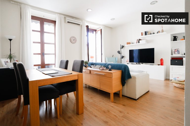 Beautiful 1-bedroom apartment for rent in Centro, Madrid