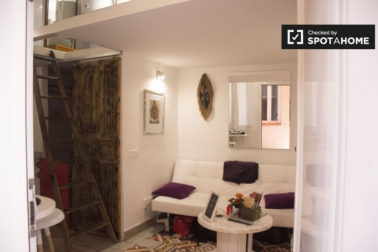 Cosy studio apartment for rent in Lavapiés, Madrid