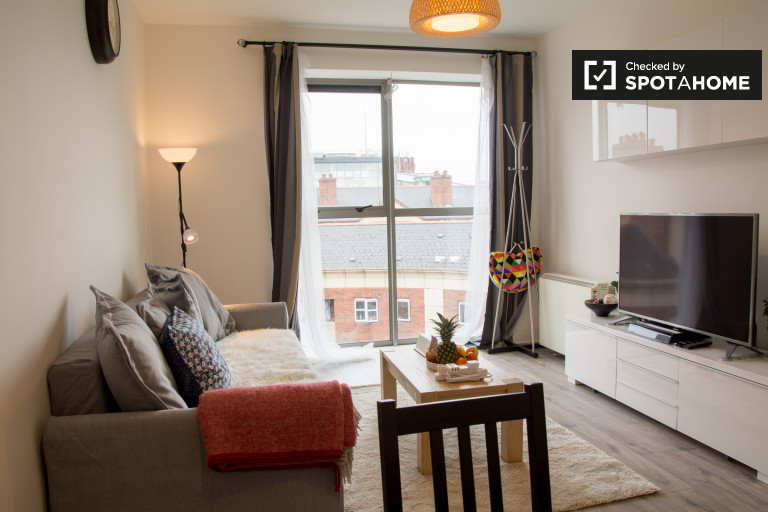 Bright 1-bedroom apartment for rent in Dublin City Center