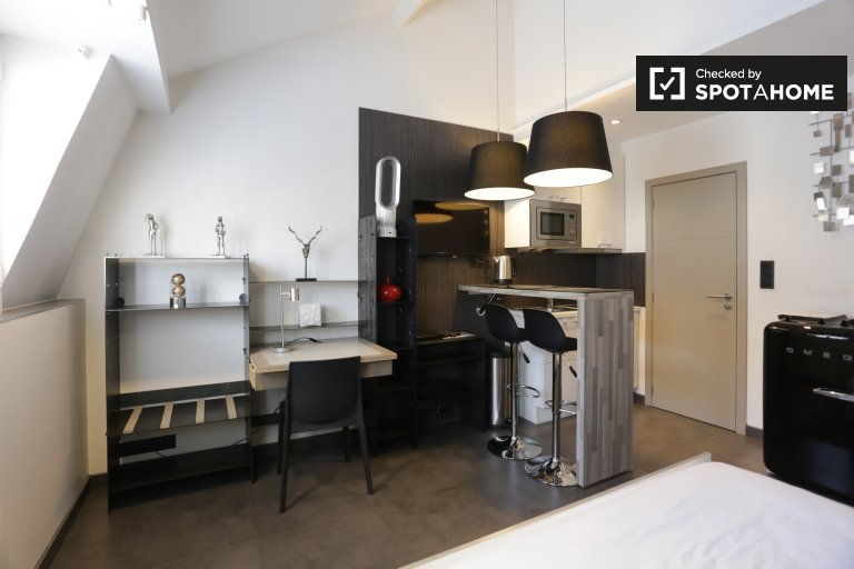 Stylish studio apartment for rent in Brussels City Centre