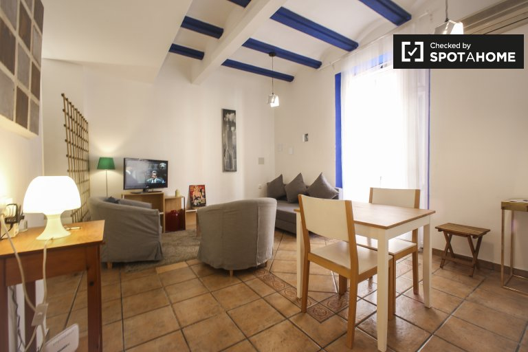 Studio apartment for rent in Ciutat Vella, Valencia