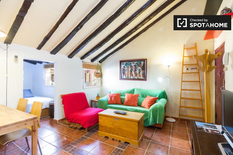 1-pokojowe mieszkanie z klimatyzacją do wynajęcia w Lavapiés w Madrycie