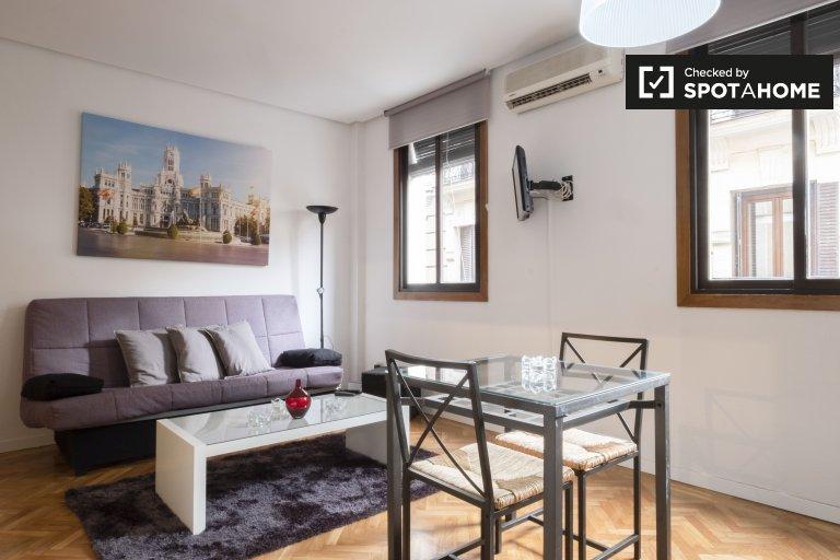 1-pokojowe mieszkanie do wynajęcia w Madrycie Centro