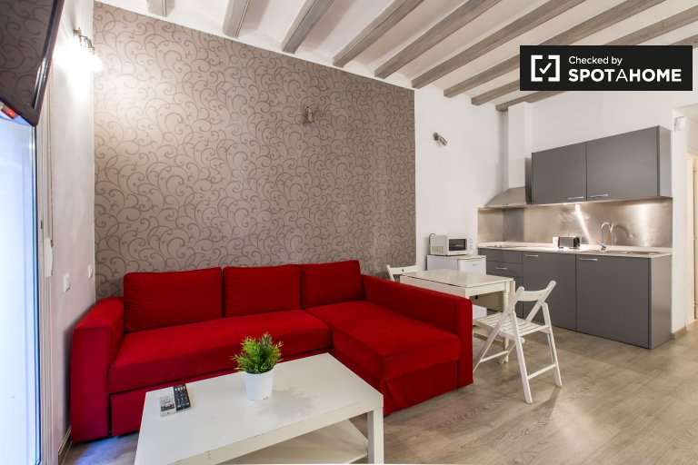 Modern studio apartment for rent in El Raval, Barcelona