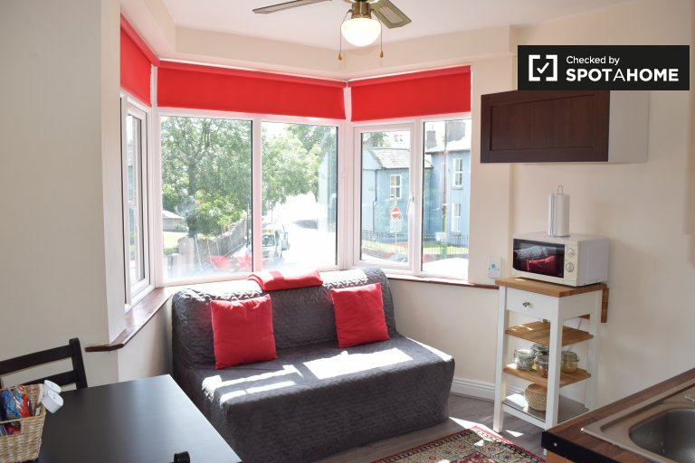 1-bedroom flat to rent in Ranelagh, Dublin