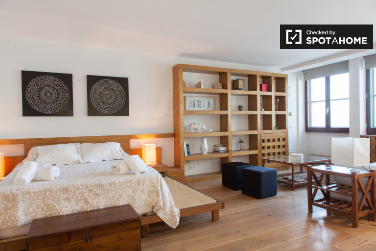 Studio apartment with panoramic views for rent in Plaza España