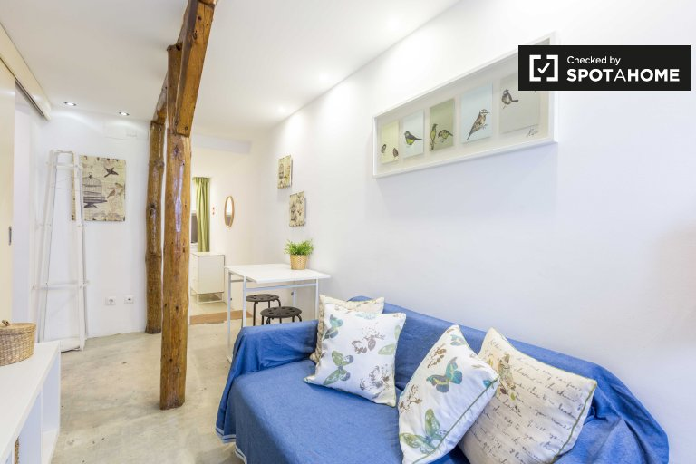 Cute studio apartment for rent in Bairro Alto, Lisbon