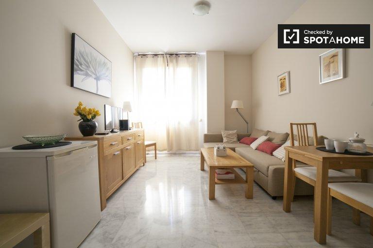Beautiful 1-bedroom apartment for rent in Sevilla Este