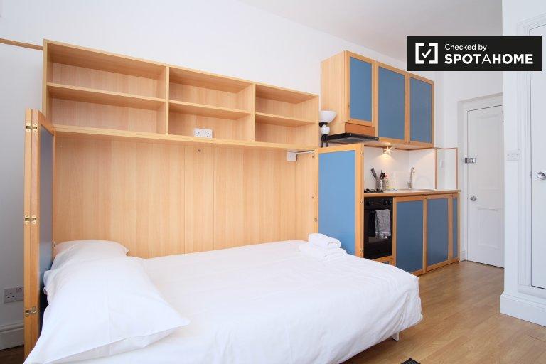 Jasny apartament typu studio do wynajęcia w Hammersmith w Londynie