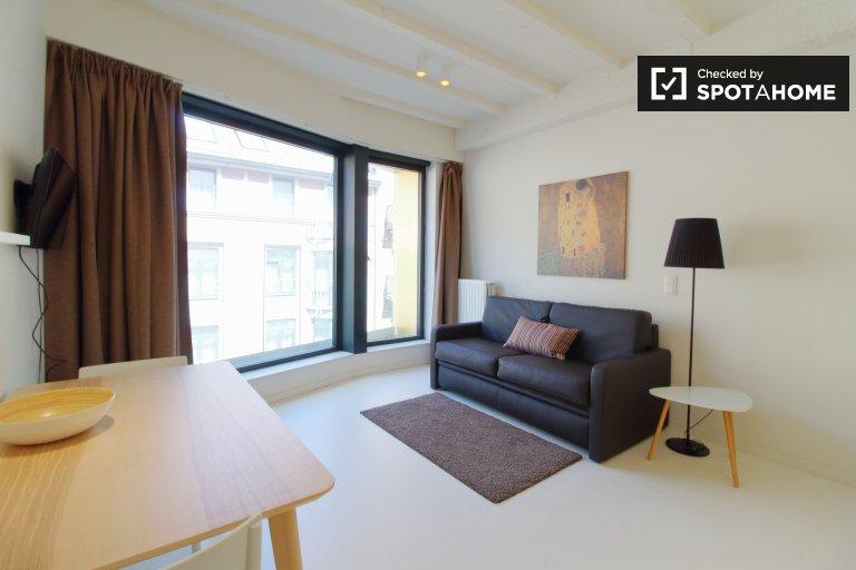 Modern studio for rent in Brussels City Center