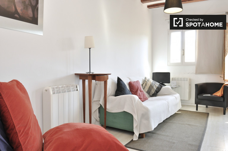 2-bedroom apartment for rent in El Raval, Barcelona