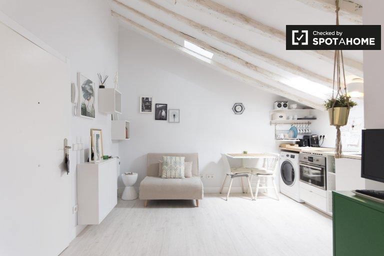 Studio apartment for rent in La Latina in Madrid