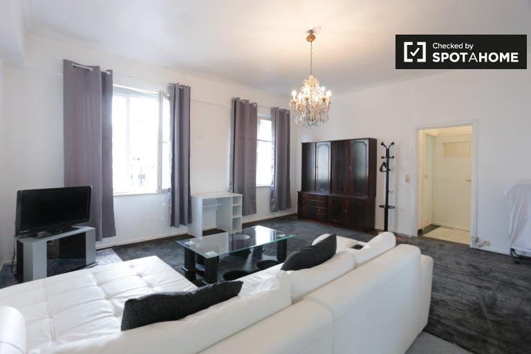 Wielkie 1-pokojowe mieszkanie do wynajęcia w Centre, Bruksela