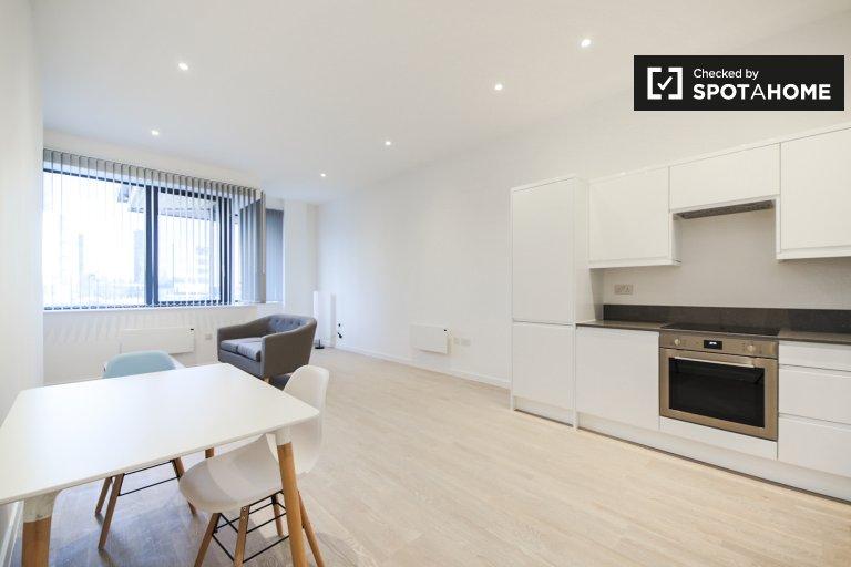 Mieszkanie z 1 sypialnią do wynajęcia w Brentford w Londynie