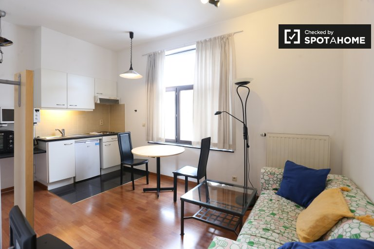 Studio apartment for rent in Ixelles, Brussels