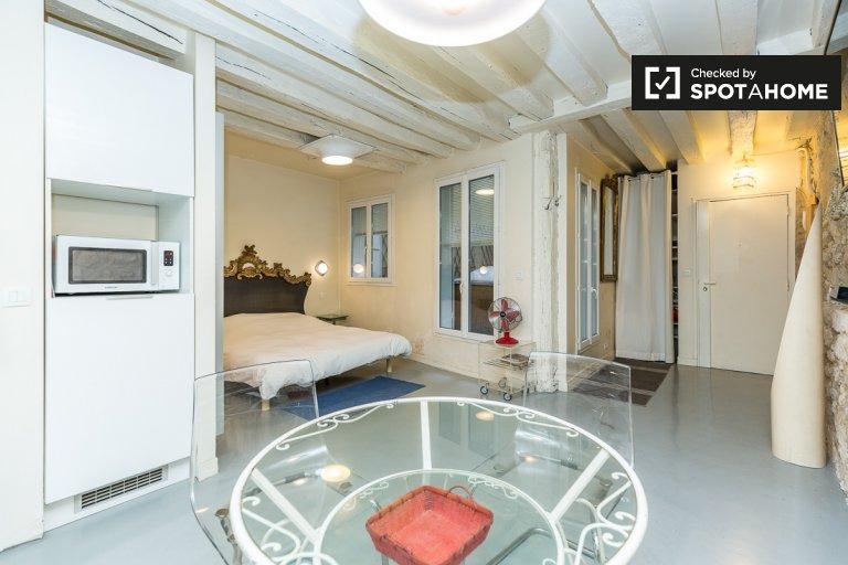 Studio apartment for rent in 4th arrondissement, Paris
