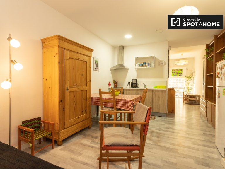 Homely 2-bedroom apartment for rent, Poble-sec, Barcelona