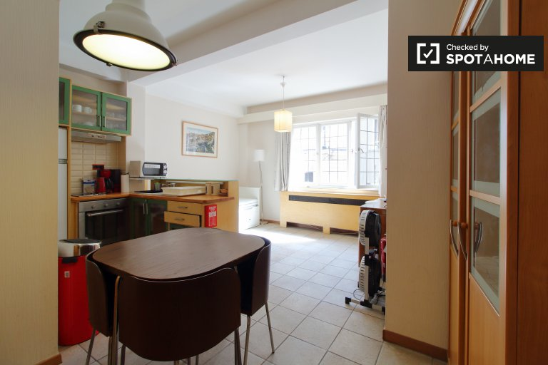 Compact studio apartment for rent in Brussels' City Center