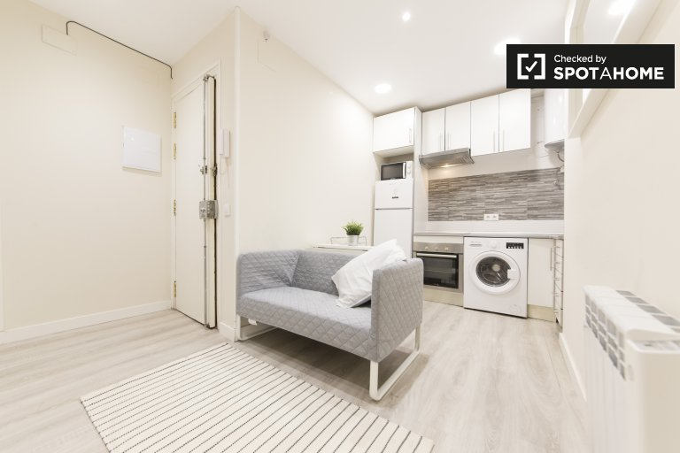 Minimal 2-bedroom apartment for rent in Moncloa, Madrid