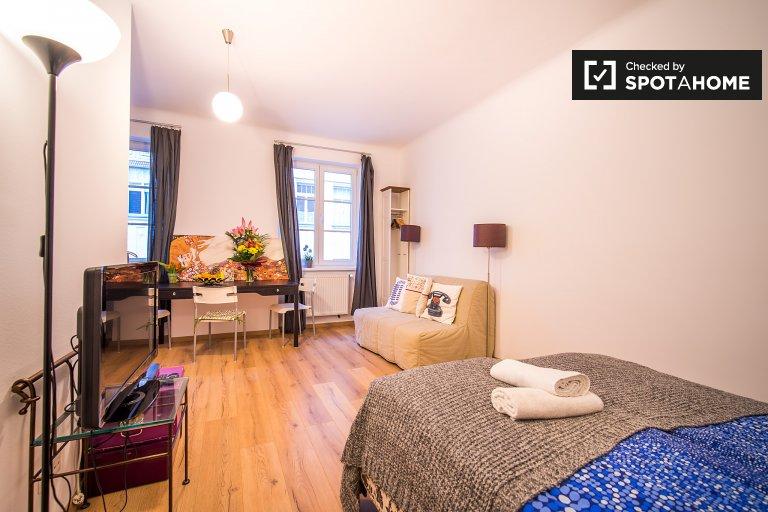 Modern studio apartment for rent in Margareten
