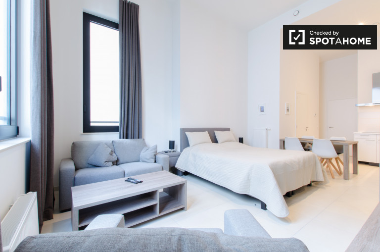 Moderno estudio en alquiler en el Centro de Bruselas