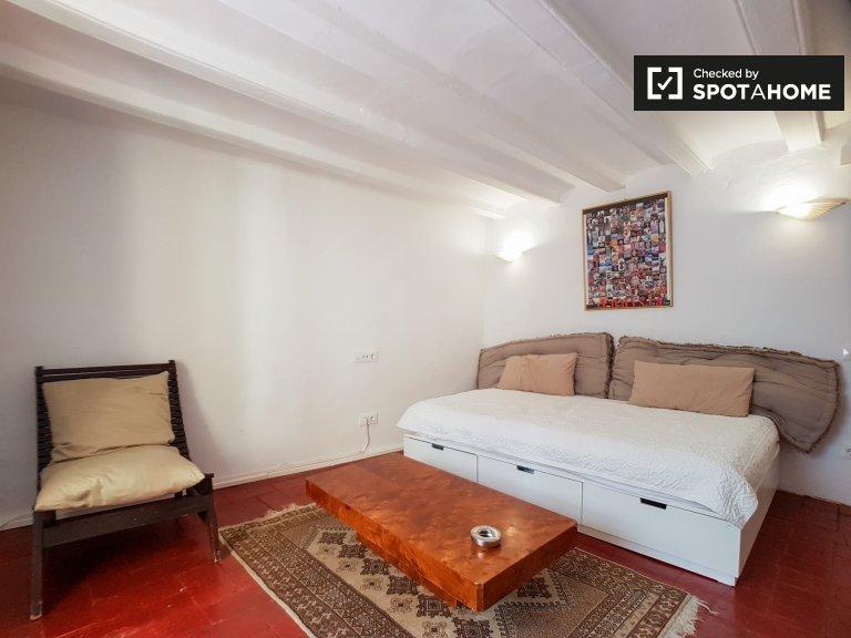 Monolocale in affitto a Raval, Barcellona